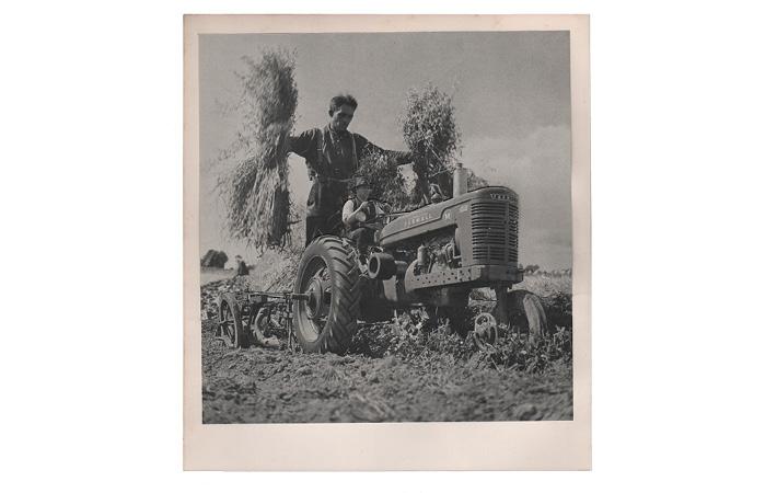 Landbouw_710x3